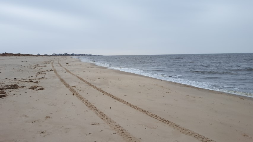 Beach plum island state park update delaware surf for Island beach state park fishing