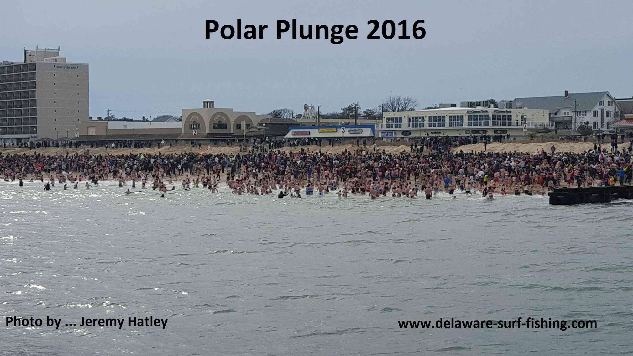 polar plunge 2016, Rehoboth beach, Lewes, delaware, sussex county