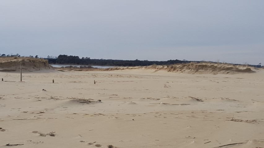 breach in dunes, cape henlopen state park, chsp, delaware, sussex county