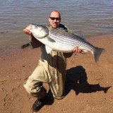 Striped Bass Survey Indicates Below-Average Reproduction In Maryland