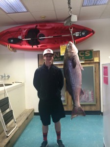 striped bass, delaware bay, state record,