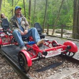 Ride The Rails Or Go Ape In the Trees