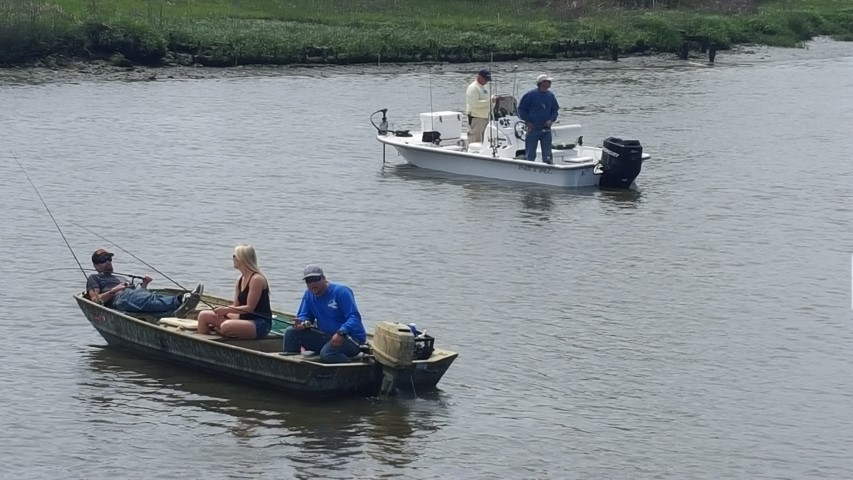 The 2016 canal flounder tournament delaware surf for Delaware surf fishing