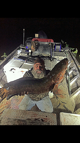 snakehead, maryland state record, bow fishing