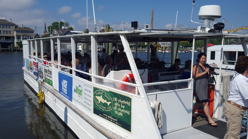Cape Water Tours and Taxi, lewes, delaware, sussex county, lewes rehoboth canal, delaware bay, broadkill river, ecotours, sunset crusies, osprey tagging, water taxi