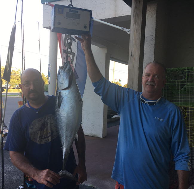 false albacore, delaware state record, sussex county, masseys canyon, offshore fishing, lewes harbor marina