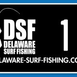 DSF Vanity Tags Go On Sale Wednesday At Noon