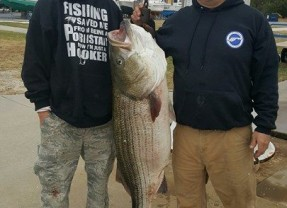 Pending New Delaware Striped Bass Record