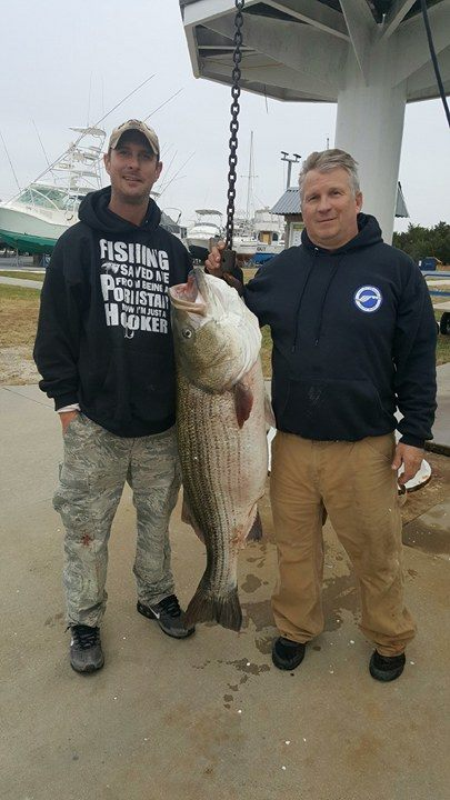 delaware state record, striped basss, 2016, paul santa barbara, kenny kaiss, delaware, sussex county, hookem and cookem, overfalls, delaware bay, rockfish, linesider