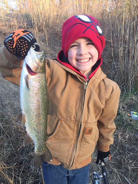 trout, rainbow trout, brook trout, newtons pond, delaware, sussex county