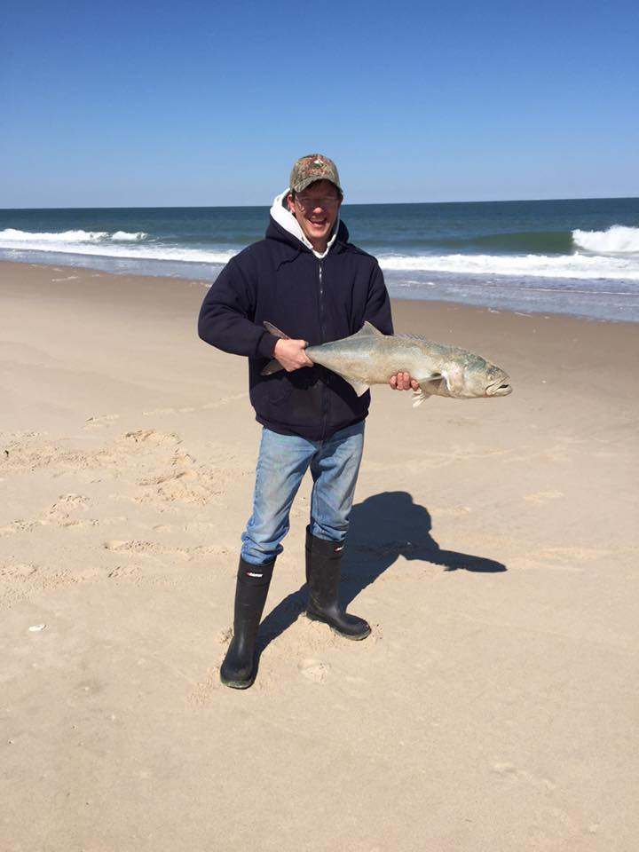 bluefish, delaware, sussex county, conquest beach, yellow eyed devil, mullet chunks