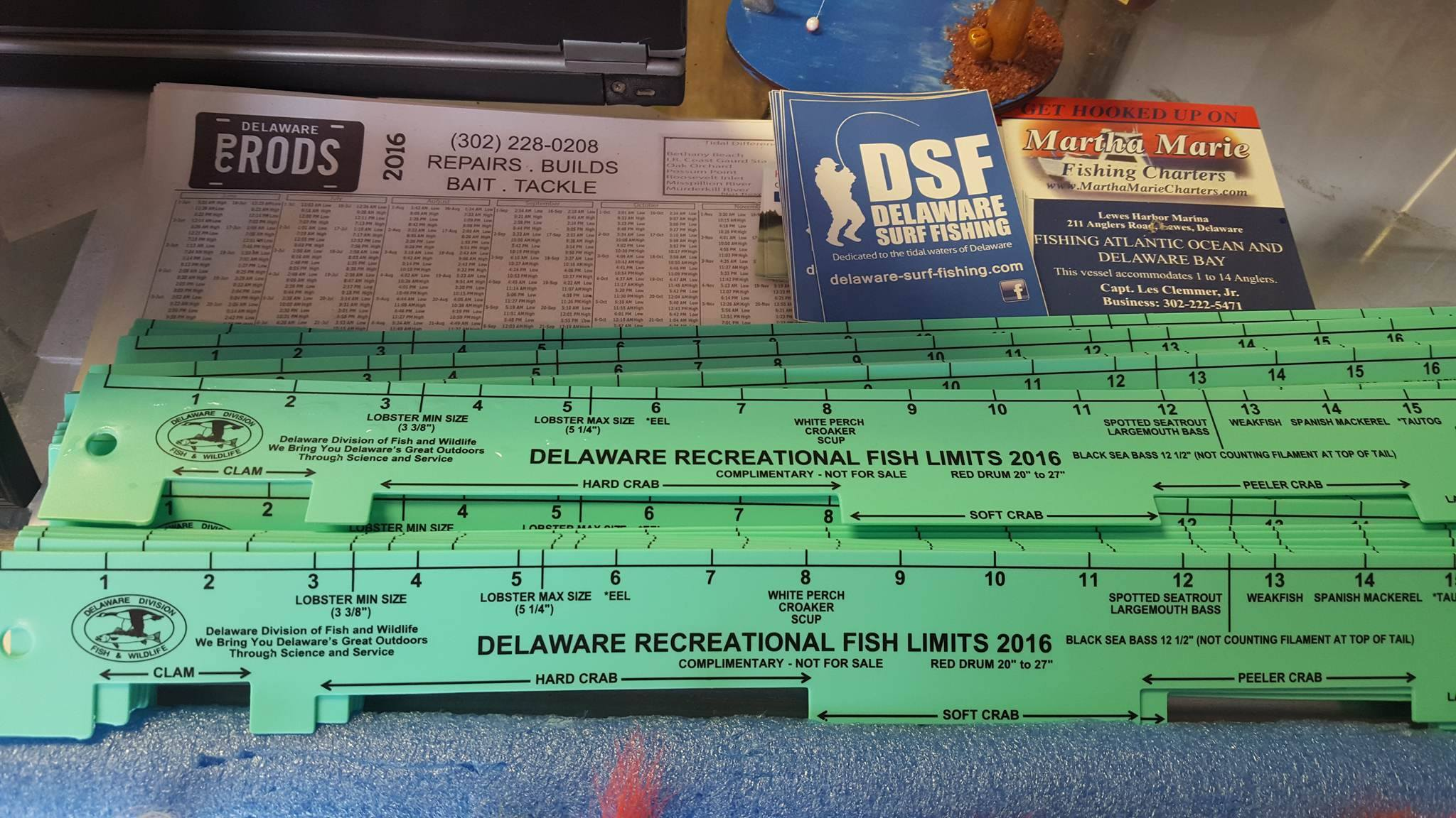 2016 Delaware State Fishing Ruler
