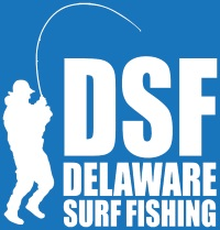 Delaware Surf Fishing