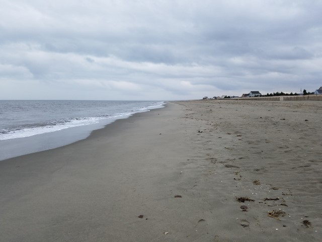 delaware bay, broadkill beach, beach plum islandstate park, lewes, route 16, prime hook, bay beach, anchorage